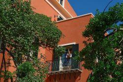 Sardinië / Noord-West / Asfodeli Piccola
