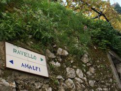 Amalfikust