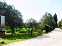 Sicilië / West / Baglio Fontanasalsa