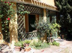 Abruzzo / Centraal / Girasole (Le Magnolie)