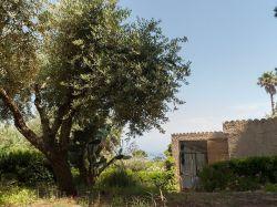 Calabrië / Tropea / Angiolone (Berto)