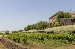 Sicilië / Oost / Agriturismo Sciaraviva