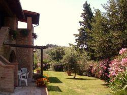 Toscane / Siena / Abete (C. Giulia)
