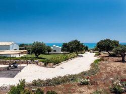 Sicilië / Zuid-Oost / Ulivi (Isla Verde)
