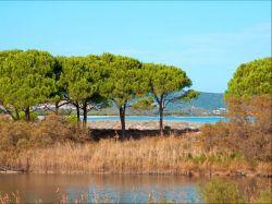 Sardinië / Noord-Oost / Residence Mare e Pineta