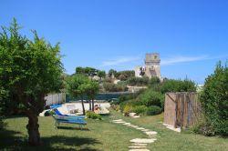 Puglia / Centraal / Trullo Fiore di Mare