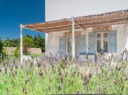 Puglia / Zuid / Masseria Montelauro