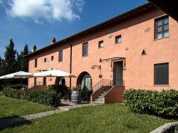 Toscane / Florence / Vigneto (Cantagallo)
