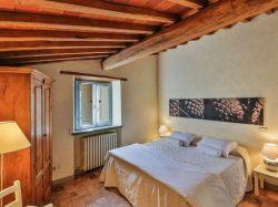 Toscane / Arezzo / Edera (Odina)