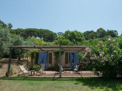 Casa Antonia (Berto)