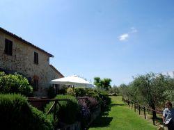 Toscane / Siena / Cantina (Il Poderino)