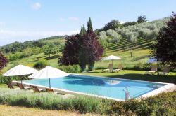 Toscane / Siena / Il Leccino (Pornanino)