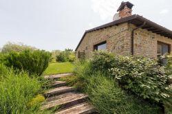 De Marken / Zuid / Picchio Verde