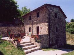 Toscane / Lucca-Pisa / Formica (Al Sambuco)