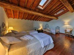 Toscane / Arezzo / Vigneto (Odina)
