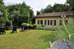 Toscane / Arezzo / Lavanda (S. Canaldo)