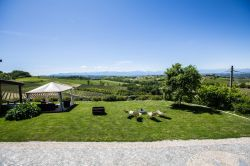 Piemonte / Le Langhe / Anna (Bricco)