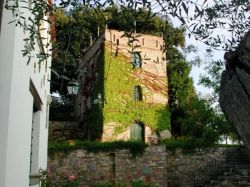 Toscane / Toscaanse kust / Olivaia (Uccelliera)