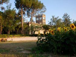 De Marken / Noord / Feronia (Pignocco)