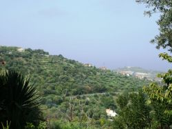 Sicilië / Noord-Oost / Chalet Il Tartufo