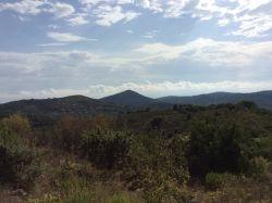Lazio & Rome / Zuid / Agriturismo Mandrarita
