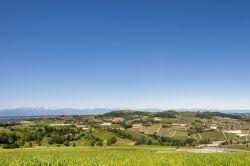 Piemonte / Le Langhe / Martina (Bricco)