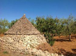 Apulië / Centraal / Agriturismo Pilapalucci