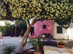 Sicilië / West / Casa Teresa