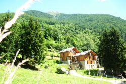 Trentino / Val di Sole  / Maso Fior di Bosco