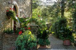 Toscane / Lucca-Pisa / B&B L Arcadia