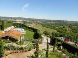 Piemonte / Le Langhe / Bricco dei Cogni