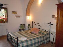 Toscane / Siena / Cedro (C. Giulia)