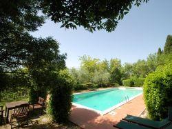 Toscane / Arezzo / Limonaia (S. Canaldo)